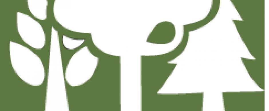 Logo MozFIP