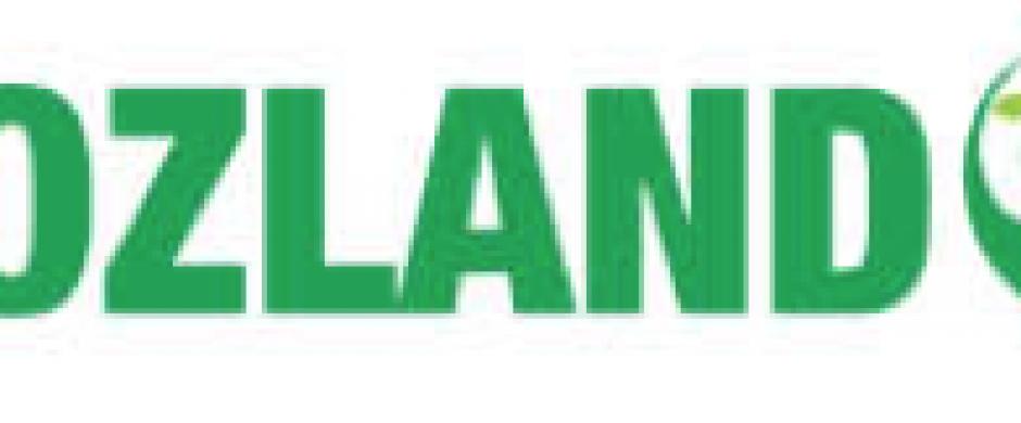 Logotipo MozLand Terra Segura